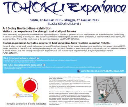 Tohoku Experience 2013 Poster