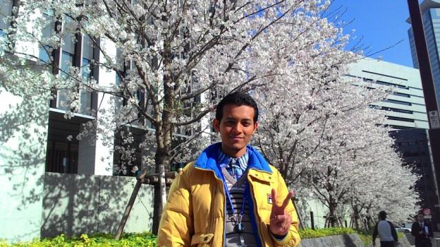 Bersama rimbunnya Bunga Sakura di daerah Kasumigaseki Tokyo-Jepang [Selasa, 31 Maret 2015]