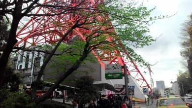 Akhirnya kesampaian untuk pertama kalinya mengunjungi Tokyo Tower, Sabtu 11 April 2015