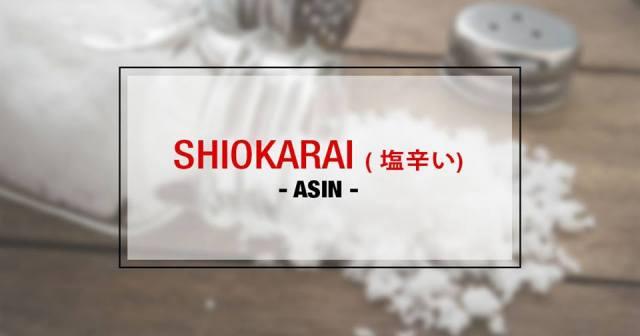 056-6-rasa-dalam-bahasa-jepang-shiokarai